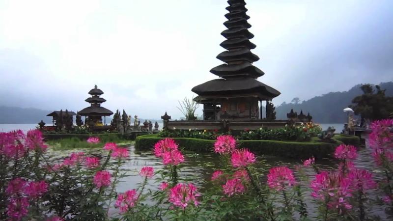 2014 – L'isola di Bali